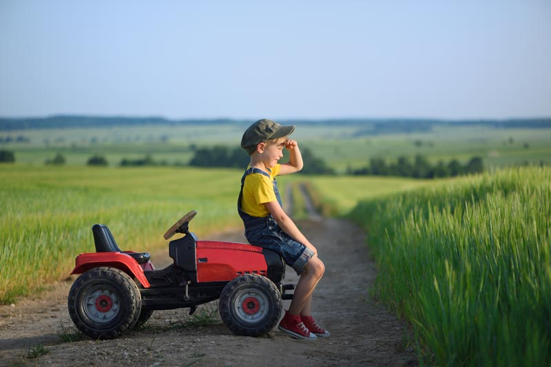 hicks advisory business and farm succession