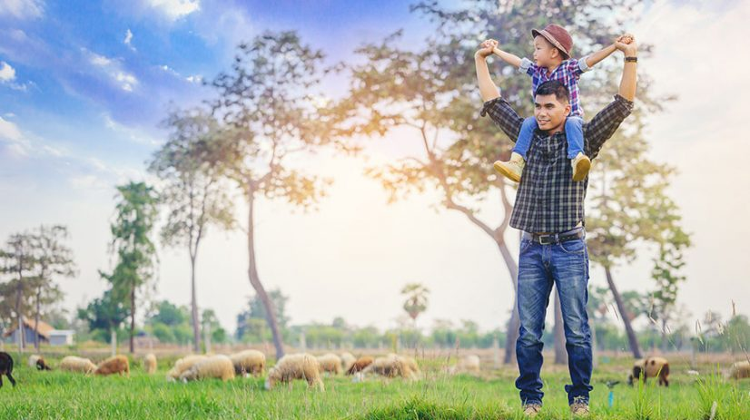 business farm succession